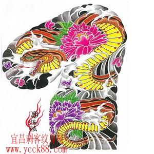 蛇纹身图案大全大图内容|蛇纹身图案大全大图图片